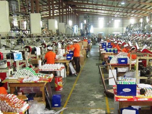 Công nghiệp nhựa Việt Nam gồng mình vượt khó. Ảnh: TTXVN