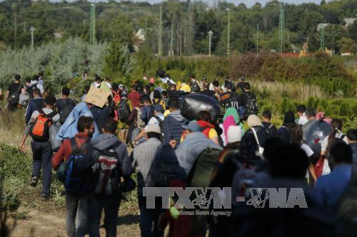 Số người tới Đức xin tị nạn giảm mạnh. Ảnh: TTXVN
