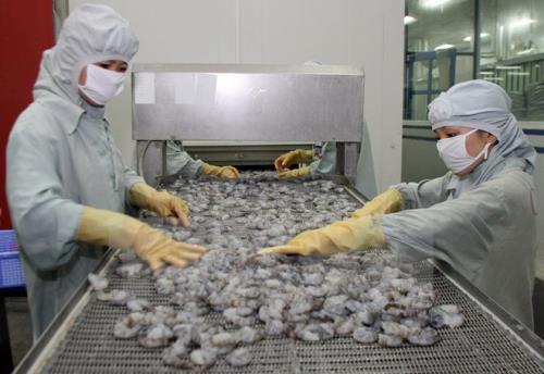 Image result for Chế biến thủy sản tại nhà máy ở Việt Nam. Ảnh: TTXVN