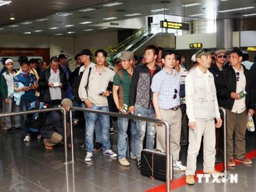 Tư vấn pháp luật, vận động người lao động Việt Nam tại Hàn Quốc về nước đúng hạn