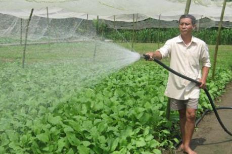 Khi nông dân chưa muốn sản xuất theo Viet GAP!