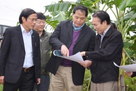 Hà Nội phát triển các vùng sản xuất hàng hóa tập trung