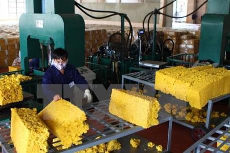 Vẫn thiếu bộ quy chuẩn quốc gia cho ngành cao su