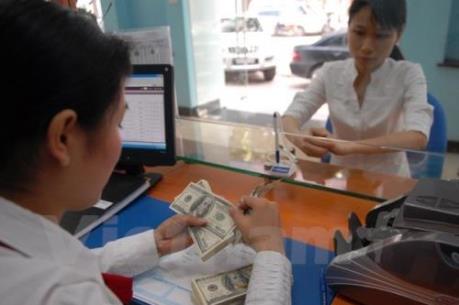 USD vẫn kịch trần sau tuyên bố của Ngân hàng Nhà nước