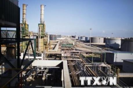 Triển vọng giá dầu tiếp tục ảm đạm trong ngắn hạn