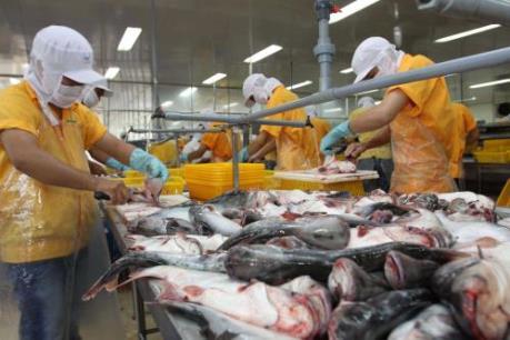 Hợp tác công – tư hỗ trợ phát triển thủy sản bền vững