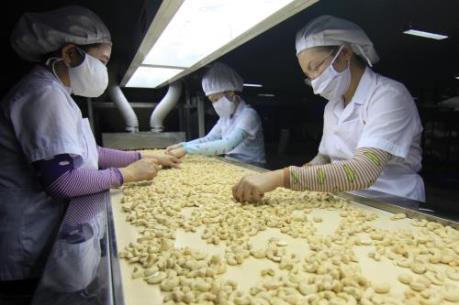 Tiếp cận thị trường EU vẫn là bài toán khó cho doanh nghiệp Việt