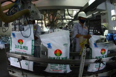 Đạm Cà Mau sẽ cung ứng hơn 250.000 tấn đạm cho vụ Đông Xuân