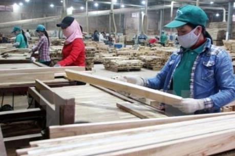 Gỗ đứng thứ 2 trong các mặt hàng xuất khẩu sang Trung Quốc