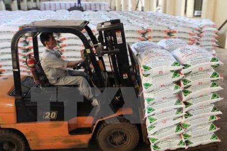 Cam kết cung cấp sản phẩm phân bón chất lượng cao
