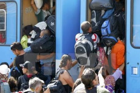 OECD: Sẽ có 450.000 người di cư được hưởng quy chế tị nạn lâu dài
