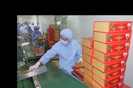 Khánh thành nhà máy sản xuất đông dược đầu tiên tại Tây Nguyên