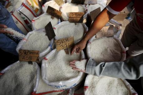 Indonesia có thể thiếu gạo dự trữ cho năm 2016