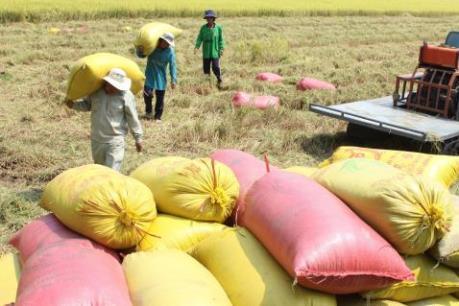 Xuất khẩu hàng nông sản chủ lực có xu hướng giảm