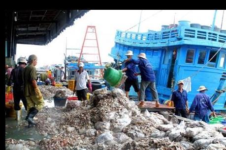 Đưa vào sử dụng cảng cá lớn nhất Bà Rịa-Vũng Tàu