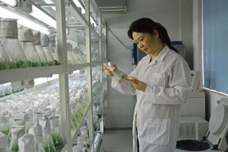 Chính phủ phê duyệt chương trình bảo tồn nguồn gen