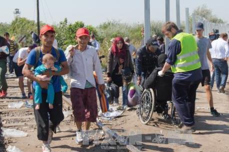 EC hợp tác với Thổ Nhĩ Kỳ để ngăn dòng người tị nạn đổ vào châu Âu