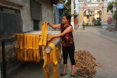 Có làng nghề ở Hà Nội vượt quy chuẩn môi trường đến 9.200 lần