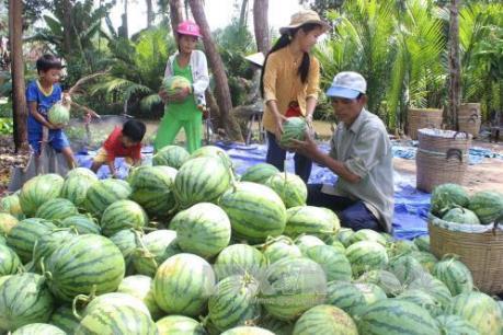 Thúc đẩy xuất khẩu các mặt hàng nông sản vào Singapore