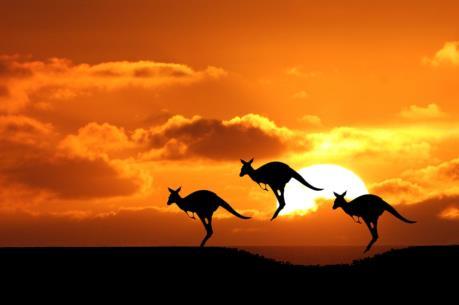 TPP đưa nông sản Australia tiến xa hơn