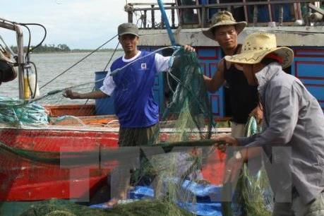 Cấm khai thác hải đặc sản trên vùng biển Bình Thuận