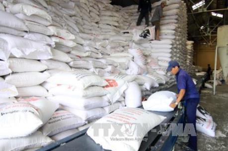Hợp tác công-tư: Động lực để phát triển ngành lúa gạo