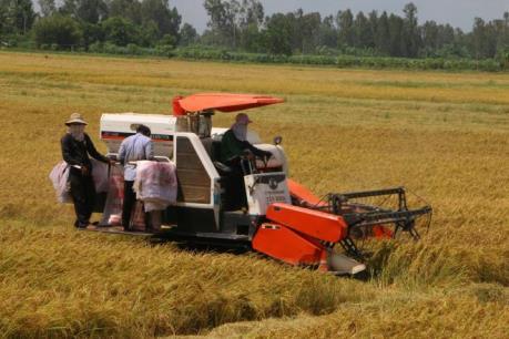 Nhật Bản nên ưu tiên đầu tư sản xuất giống cây trồng ở Việt Nam