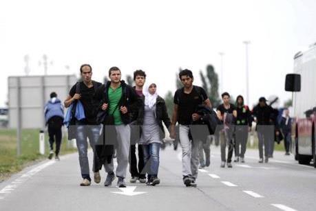 """Vấn đề người di cư : EU muốn xóa bỏ """"con đường Balkan"""""""