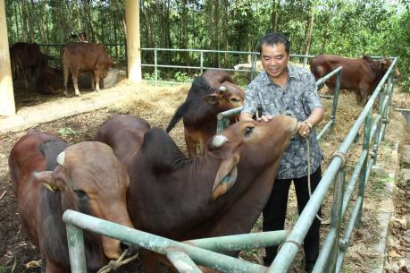 """Khuyến nghị chính sách cho ngành chăn nuôi """"hậu"""" TPP"""