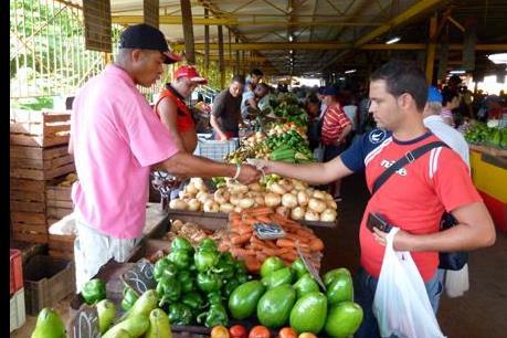 Cuba giảm nhập khẩu lương thực của Mỹ