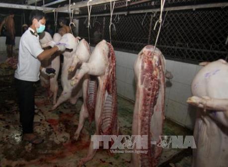 Bắt quả tang cơ sở giết mổ bơm nước và tạp chất vào lợn