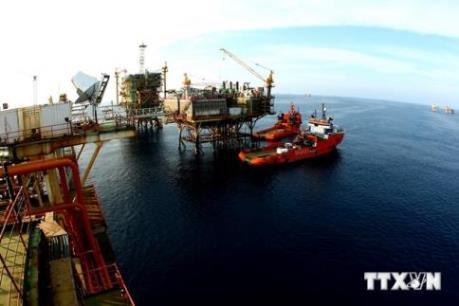 Cá nhân được khai thác dầu khí