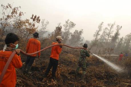 Malaysia và Indonesia đối thoại về chống cháy rừng và khói bụi