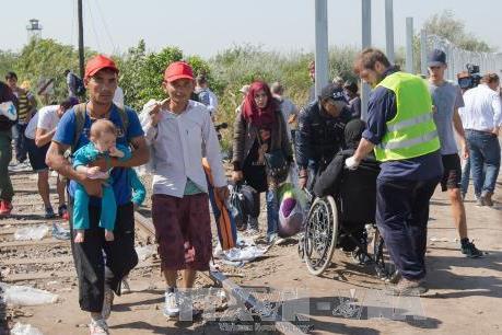Vấn đề người di cư: Các nước châu Âu tiếp tục nhiều biện pháp ứng phó