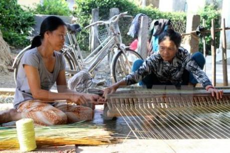 Vực dậy làng nghề dệt chiếu Định Yên
