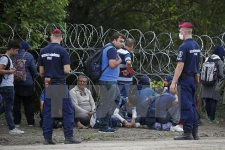 Liên đảng bảo thủ cầm quyền ở Đức đạt thỏa thuận về vấn đề di cư