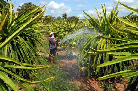 Tăng trưởng của ngành nông nghiệp có thể chạm đáy 5 năm