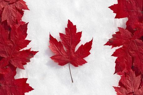 Số người Canada ủng hộ TPP đang tăng lên