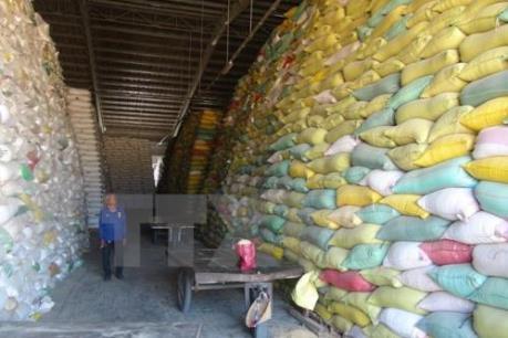 Indonesia phải nhập khẩu gạo vì El Nino