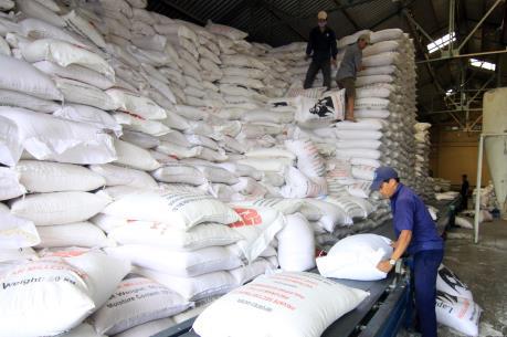 Xuất khẩu gạo có thể đạt ngưỡng 8 triệu tấn
