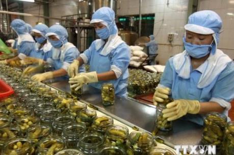 Nâng chất cho xuất khẩu Việt Nam (phần 2)