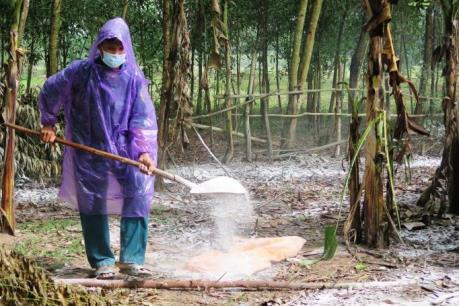Dịch lở mồm long móng lan rộng tại Cao Bằng