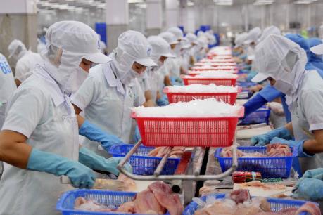 Xuất khẩu cá tra: Hết thời cạnh tranh giá rẻ