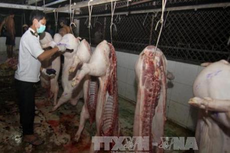 Bắc Giang liên tiếp phát hiện các vụ bơm nước, tạp chất vào lợn
