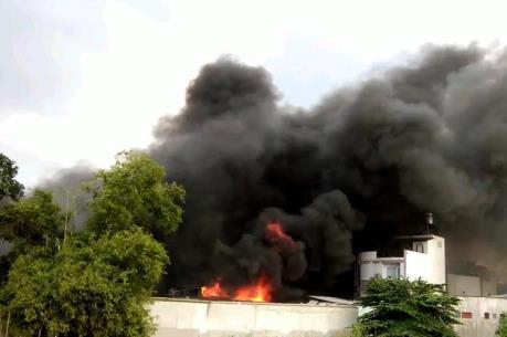 TP Hồ Chí Minh: Cháy lớn thiêu rụi toàn bộ xưởng tôm đông lạnh