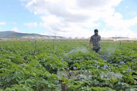 Doanh nghiệp Nhật Bản đầu tư vào nông nghiệp và du lịch tại Việt Nam