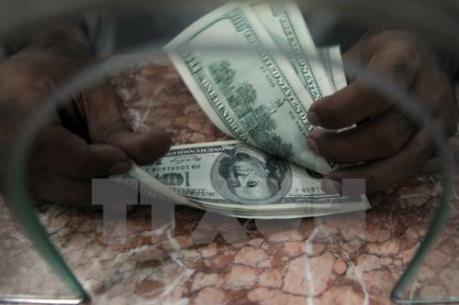 USD đứng vững nhờ kỳ vọng Fed nâng lãi suất
