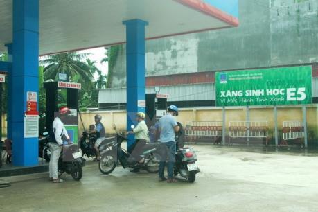 Tp. Hồ Chí Minh khó hoàn thành kế hoạch đưa xăng sinh học E5 ra thị trường