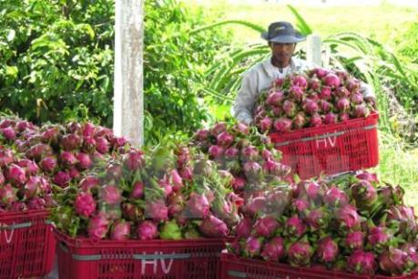 Mục tiêu xuất khẩu 30 tỷ USD nông lâm sản hoàn toàn khả thi
