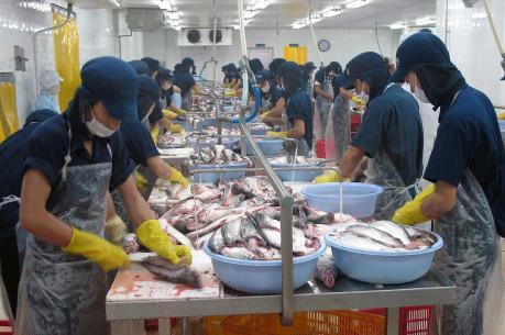 Mỹ áp đặt các quy định mới về cung cấp cá da trơn